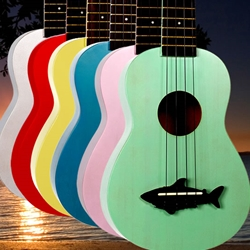 Ukuleles and Ukulele Instruction Books